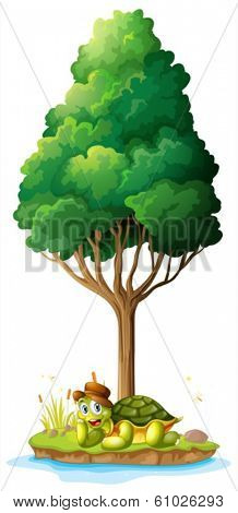 Illustration of an island with a smiling turtle under the tree on a white background