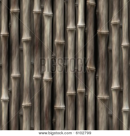 Bamboo Plants Wallpaper