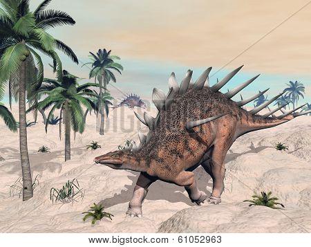 Kentrosaurus dinosaurs in the desert - 3D render