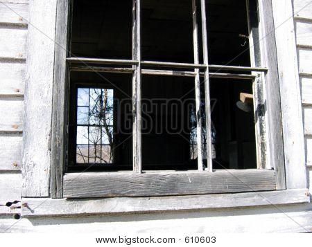 Best Window