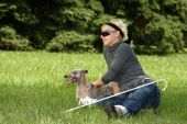 blind woman playing with her dog outdoor poster