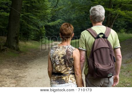Senior couple hiking in the woods poster