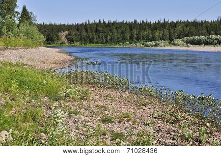 North River Landscape.