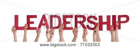 People Holding Leadership