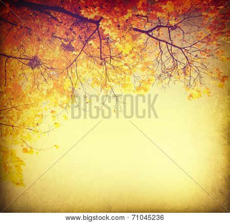 Autumn background. Fall Abstract vintage autumnal border background with colorful leaves