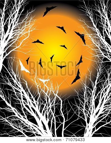 Halloween moon night background