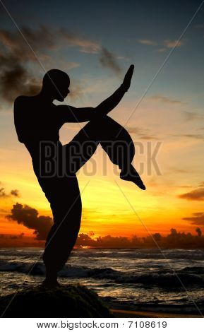 Martial Art Figure On Beach