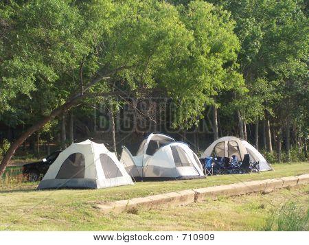 Three tents under trees