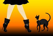 beautiful womanish legs in black shoes with cat poster
