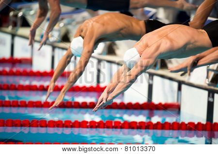 Men Start Swimming Race