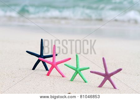 Four Coloured Star Fish