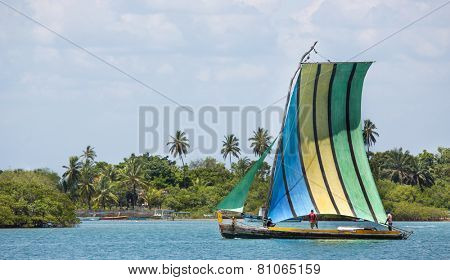 Sail boat in the amazon of brazil: Rain forest near Salvador in the Bahia de Todos. Landscape with a traditional handmade boat of wood.