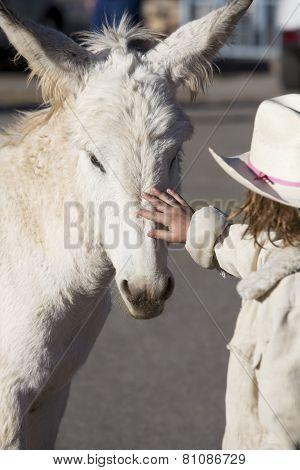 Burro With Child