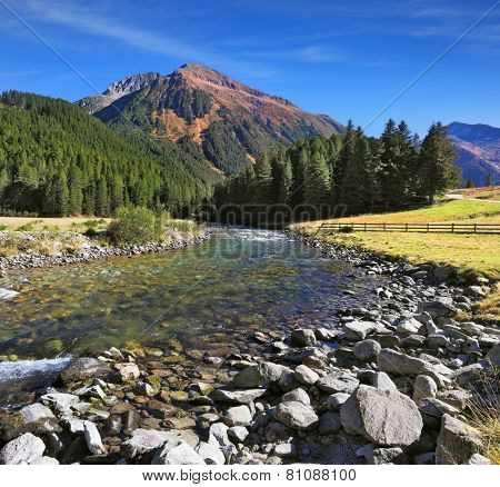 Austrian Alps. Headwaters Krimml waterfalls. The narrow stream flows between fields and pine forests. Bluish - green transparent water glows in the sun