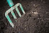 Garden fork turning  black composted soil in compost bin ready for gardening, close up. poster