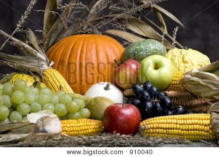 Autumn Fruit 4