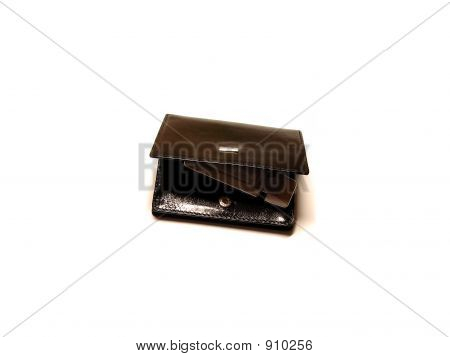 Visitcard'S Purse With Flash Drive