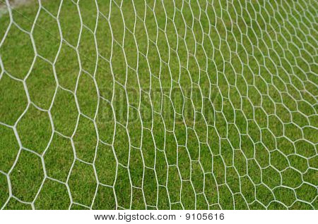 soccer net on green grass background