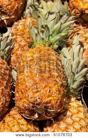 Ripe pineapples for sale at a fruit and vegetables open market
