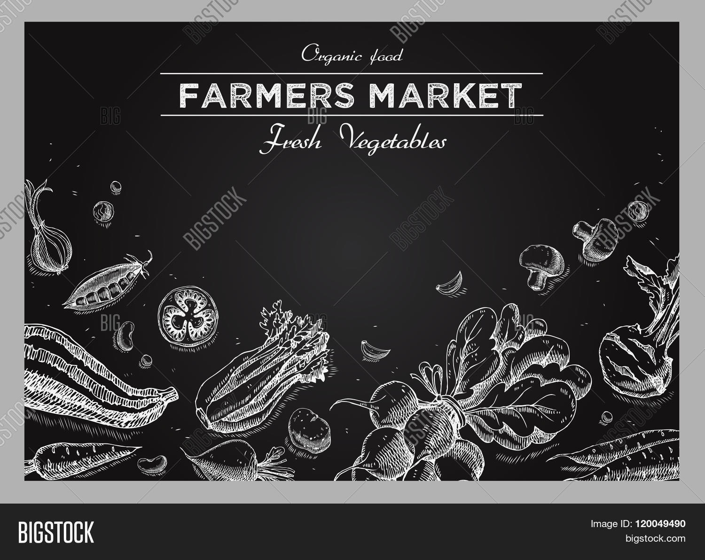 Templates Label Vector & Photo (Free Trial) | Bigstock