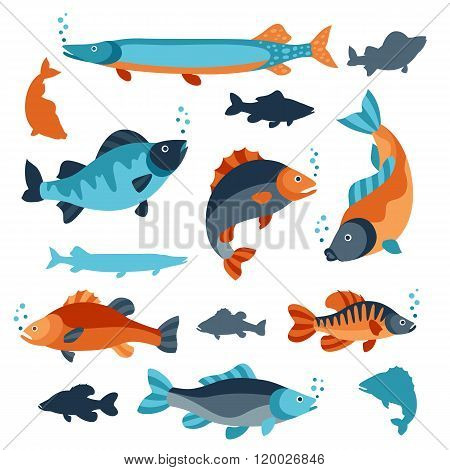 Set of various fish. Objects for decoration, design on advertising booklets, banners, flayers