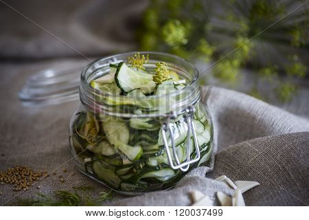 Home made pickled cucumber in a jar of glass ** Note: Soft Focus at 100%, best at smaller sizes