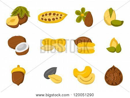 Set of nuts and seeds icons