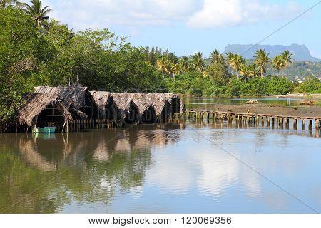 Cuba Village