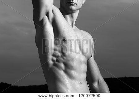 Bodybuilder With Muscular Torso