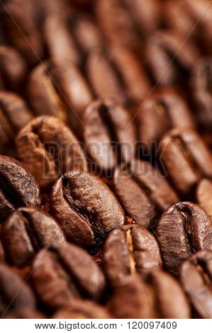 Beans and ground coffee