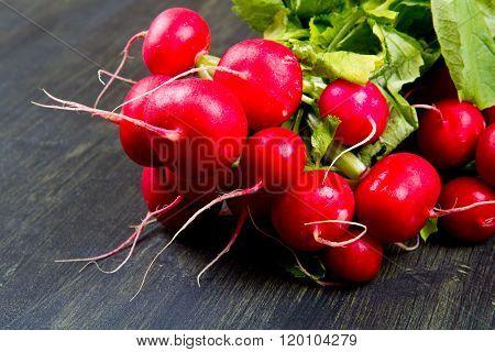 Fresh red radish isolated on wood background