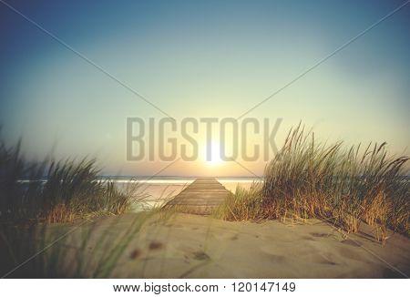 Sand Grass Beach Sun Sea Ocean Sky Trip Natural Concept
