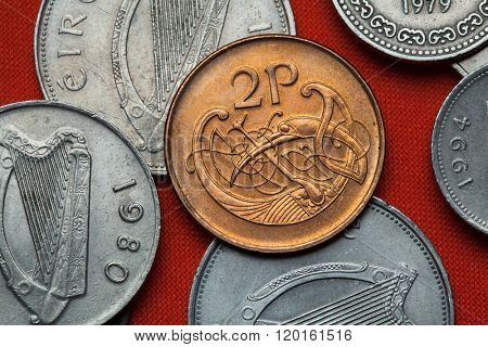 Coins of Ireland. Celtic ornamental bird depicted in the Irish two pence coin.