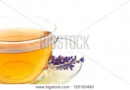 Tea of lavender