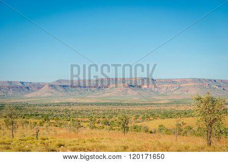 Landscape On Gib River Road