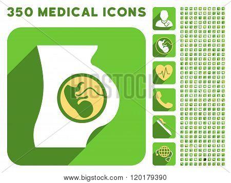 Pregnancy Anatomy Icon and Medical Longshadow Icon Set