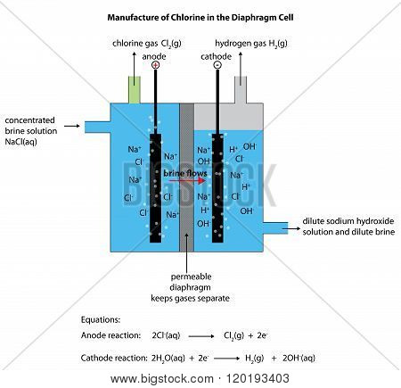 Diaphragm Cell Diagram For Manufacturing Chlorine