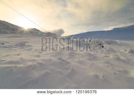 rocks in snow forest, sunny day in forest, winter forest, russian nature