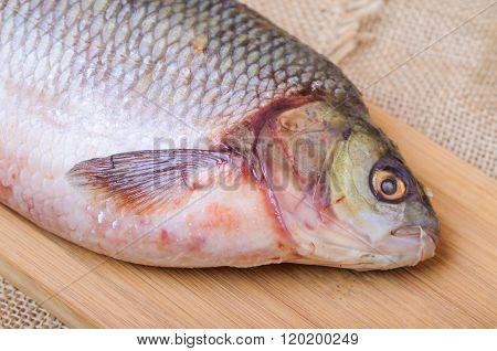 Raw fish  ide on a cutting board