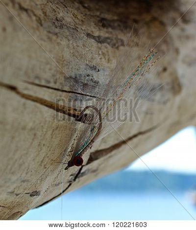 Clouser Minnow in Driftwood