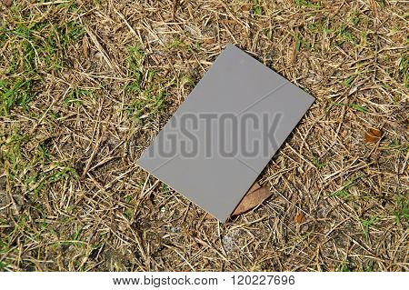 Photography Grey Card In Sunshine