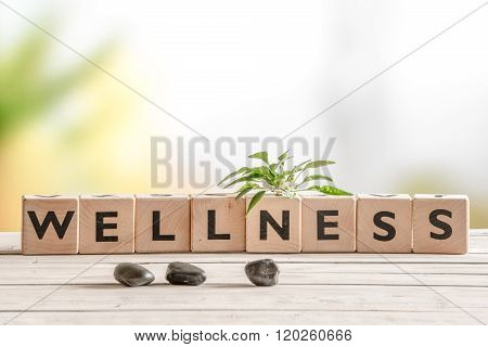 Wellness Sign With Wooden Cubes