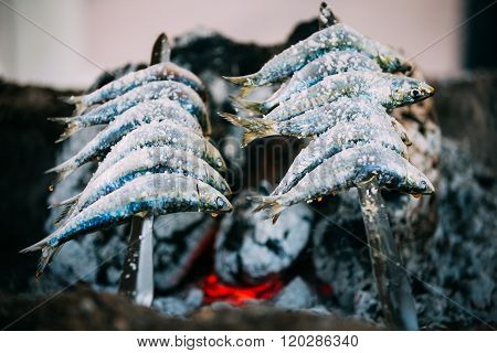 Espetos - skewer with sardines in a fire. Spanish cuisine