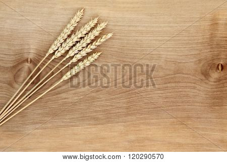 Wheat on sycamore wood forming an abstract background.