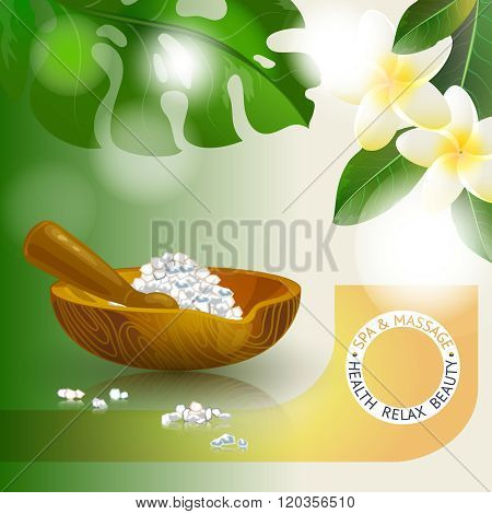 Vector illustration with  spa accessories pounders, pestle and salt