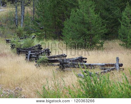 Olden log fences used years ago for fencing-in the farm properties.