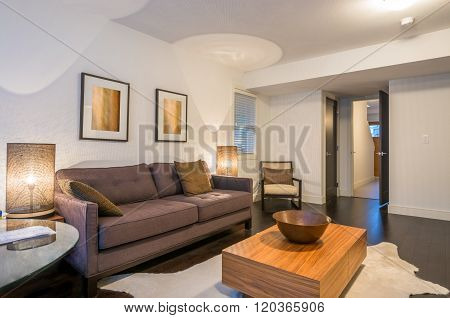 Modern living room interior design with sofa armchair and wooden coffee table.