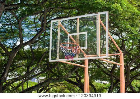 Basketball Board And Hoop
