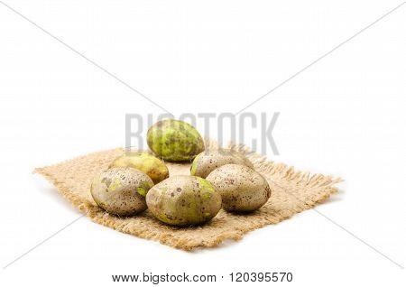 Ripe Olive Fruit.
