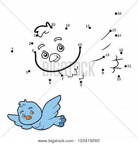 Numbers Game, Dot To Dot (bird)
